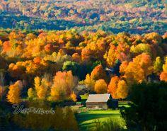 Vista Photography - Fall Foliage - Massachusetts