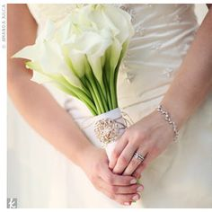 Orange Blossom Flowers by Kristina Shane: Just for Kerri: Simple White Bouquets