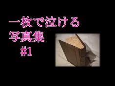 【感動する泣ける画像】 #1 一枚で泣ける写真集 世界の24枚 - YouTube