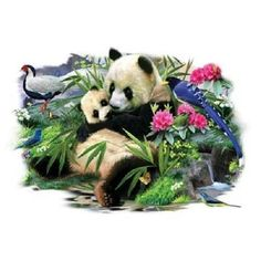 Panda Hug HEAT PRESS TRANSFER for T Shirt Sweatshirt Tote Bag Fabric Block #226b #AB
