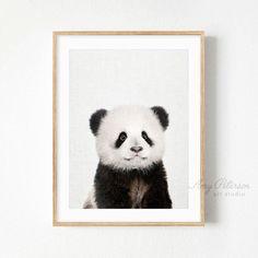 Baby Panda Print, Woodland Animal Nursery Wall Art, Animal Nursery Decor Wall Art by Amy Peterson