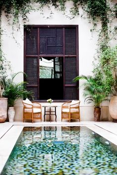 a perfect little pool, some vines growing on the stucco, the giant window. yes, yes, yes.