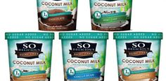 Daiya Recommends... The Best Dairy-Free Ice Cream Brands
