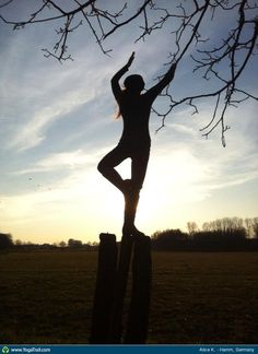 Check out the amazing Tree Pose by Alice Koziol; yoga pose performed at Hamm, Germany on YogaTrail; the World's Yoga Network. Yoga Tree Pose, Yoga Poses, Yoga Fitness, Alice, Germany, Ipad, Around The Worlds, Workout, Facebook