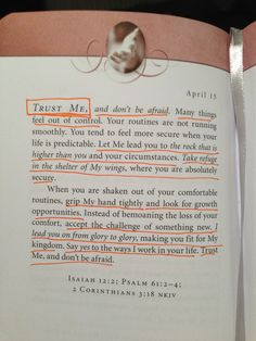 Trust The Lord- Sarah Young, Jesus Calling