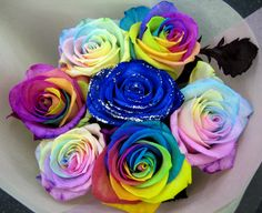 rainbow roses. i love this blue one in the middle!!!! <3