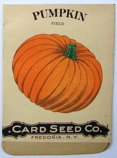 pumpkin seed packets - Google Search