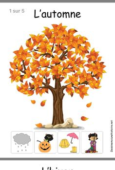 Gardening Autumn - Affichage des 4 saisons : lautomne - With the arrival of rains and falling temperatures autumn is a perfect opportunity to make new plantations Sorting Activities, Toddler Activities, Seasons Kindergarten, Preschool Seasons, Kindergarten Classroom, Kindergarten Activities, Montessori, Technology Lessons, Weather Seasons