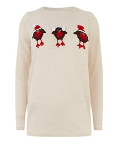 Image result for new look robin christmas jumper