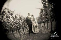 Google Image Result for http://www.ispwp.com/wp-content/image/5-spotlight/20090213-08-portland-oregon-wedding-photography.jpg