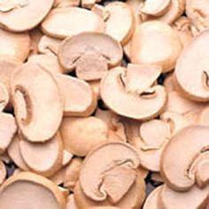 overbeck jet - mushrooms