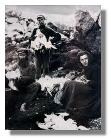 St Kilda Old Vintage Photograph