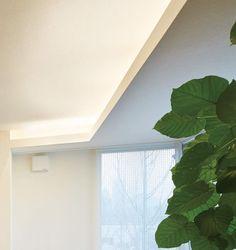 A、B コーブ照明 Plant Leaves, Lighting, Plants, Lights, Plant, Lightning, Planets