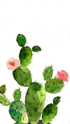 17 Ideas flowers pastell tattoo for 2019 17 Ideas flowers pastell tattoo for 2019 Succulents Drawing, Cactus Drawing, Cactus Painting, Cactus Art, Cactus Flower, Cactus Plants, Drawing Flowers, Paper Cactus, Watercolor Water