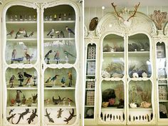 This gorgeous cabinet is located at the Bibliotèque centrale du Muséum national d'Histoire Naturelle and was built in the 18th century. You can read more about it on Morbid Anatomy and see Joanna's whole set of images on flickr.