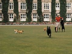The Queen at Balmoral Castle - Google Search