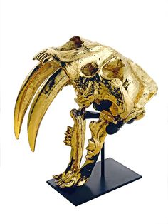 Mounted 24kt Gold Sabertooth Tiger Inspiring Hollywood Interior Design Accents, Courtesy of InStyle-Decor.com Beverly Hills for Interior Design Fans to Enjoy