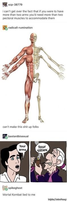 """I can't get over the fact that if you were to have more than two arms you'd need more than two pectoral muscles to accommodate them í"""" radlcalI-rumlnatlon can't make this shit up folks - iFunny :) Best Memes, Dankest Memes, Funny Memes, Tumblr Stuff, Tumblr Posts, Stupid Funny, Hilarious, Funny Stuff, Tumblr Funny"""