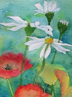 Poppies and Daisies. Watercolour.