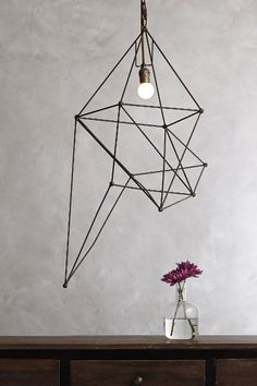 Tall Iron Web Pendant Lamp - anthropologie.com