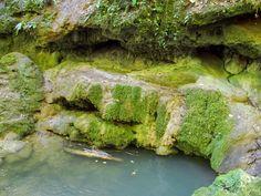A Csepegő-szikla télen igazán látványos, bár cseppkőszerű képződményeket most is látni