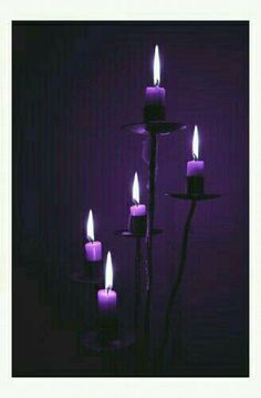 Purple candles to show lupus awareness & for those we love who have passed on. Still fighting lupus Purple Love, Purple Lilac, All Things Purple, Shades Of Purple, Deep Purple, Purple And Black, Purple Stuff, Black White, White Art