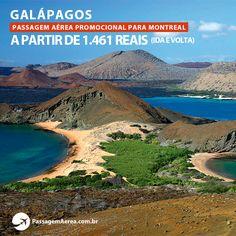 Voos para Galápagos em promoção!  Saiba mais: https://www.passagemaerea.com.br/galapagos-seymour.html
