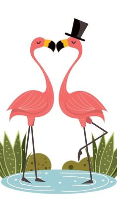 69 Ideas Wall Paper Fofos Femininos Flamingo For 2019 Flamingo Decor, Pink Flamingos, Cellphone Wallpaper, Iphone Wallpaper, Wallpaper Quotes, Wallpaper Backgrounds, Abstract Canvas, Canvas Wall Art, Best Wall Paint