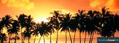 Palm Trees Facebook Timeline Cover Hd Facebook Covers - Timeline Cover HD