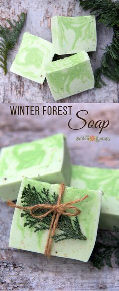 This winter forest soap recipe is scented with essential oils from forest trees making it both fresh and woodsy. Quite refreshing for your morning shower! This winter forest soap recip Soap Making Recipes, Homemade Soap Recipes, Homemade Gifts, Diy Soap Recipe Without Lye, Recipe Making, Diy Soap Bars Without Lye, Kid Recipes, Homemade Beauty, Diy Beauty