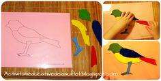 Despre pasari. Activitati educative (2 ani si 8 luni) Montessori, Spring Activities, Stickers, Outdoor Decor, Cards, School, Home Decor, Decoration Home, Room Decor