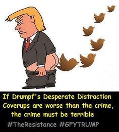 Twitter shitter Trump