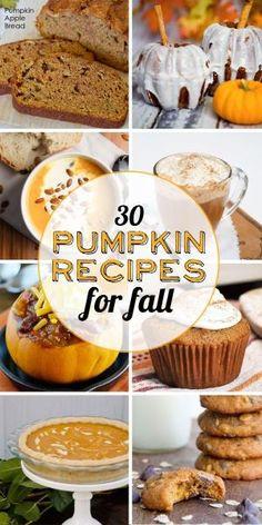 Best Pumpkin Recipes - Yellow Bliss Road Like this. Pumpkin Recipes, Fall Recipes, Holiday Recipes, Cooking Pumpkin, Best Pumpkin, Pumpkin Spice, Pumpkin Pumpkin, Spiced Pumpkin, Delicious Desserts