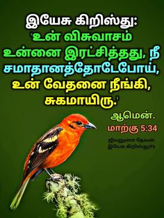 Bible Words, Bible Verses, Mark 5 34, Tamil Bible, King Of Kings, Jesus Christ, Faith, Peace, Books