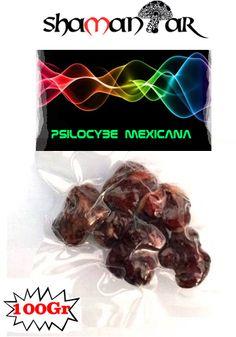 Psilocybe Mexicana, Magic truffles,Mexicana,magic mushrooms,Sclerotia,Amsterdam,Magic truffles amsterdam