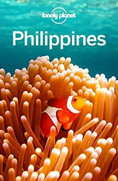 """Read """"Lonely Planet Philippines"""" by Lonely Planet available from Rakuten Kobo. Lonely Planet: The world's leading travel guide publisher Lonely Planet**'s Philippines** is your passport to the most r. Philippines Country, Voyage Philippines, Philippines Travel Guide, Lonely Planet, Got Books, Books To Read, Philippines Palawan, Manila Philippines, Mindoro"""