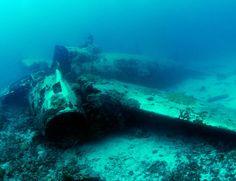 Diving Japan - Scuba diving in Japan - Best Diving in Japan