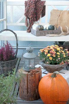 Magazine - Make your balcony autumn-ready Small Balcony Decor, Apartment Balcony Decorating, Balcony Garden, Autumn Home, Dream Garden, Chrysanthemum, Garden Design, Pumpkin, Make It Yourself