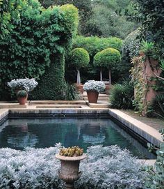 Having a pool sounds awesome especially if you are working with the best backyard pool landscaping ideas there is. How you design a proper backyard with a pool matters. Outdoor Rooms, Outdoor Gardens, Outdoor Living, Formal Gardens, Beautiful Pools, Beautiful Gardens, Cool Pools, Pool Landscaping, Pool Houses