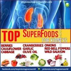 ☛ Do YOU know which foods are good for your kidneys?  Kidneys are important organs in our body and act as filters.    READ OUR ARTICLE FOR MORE ABOUT KIDNEY HEALTH:  http://www.stepintomygreenworld.com/greenliving/greenfoods/4-essential-vitamins-for-kidney-health/  ✒ Share   Like   Re-pin   Comment