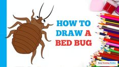 Itchy Rash, Bed Bug Bites, Coloring Tutorial, Bed Bugs, Learn To Draw, Animal Drawings, Easy Drawings, Art Projects, Draw Two