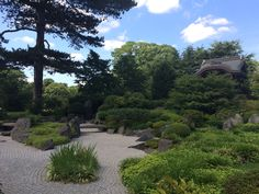 Japanese Garden Design The design of the Japanese garden evokes the feeling of peace and tranquillity. These gardens are not only beautiful, but they are practical too. The gravel allows rain to seep into soil and nearby plant roots thereby saving you water.To get the full impact of the colour ...