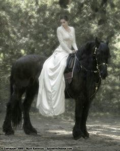 Either a Freisan wedding or gypsy vanner wedding is gonna be me