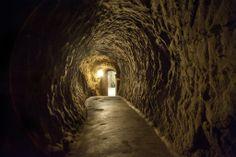 Cantina Storica, direct sale, wine cellar in Montepulciano