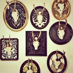 deer skulls: mounted, cameos
