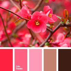 Color Palette Ideas | Page 9 of 389 | ColorPalettes.net