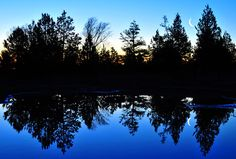 Cool Blue Morning Reflections