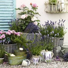 Vive la France: Provence style decoration-Vive la France: Deko im Provence-Stil Lavender, lemons and shabby chic create the French look. We show you how you can design it yourself with graceful ideas. Garden Cottage, Garden Pots, Diy Garden, Garden Types, Garden Club, Shabby Chic Garden, Balcony Gardening, Shabby Cottage, Back Gardens