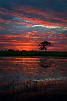 Chronicles of a Love Affair with Nature Beautiful Sunset, Beautiful World, Beautiful Places, Beautiful Pictures, Beautiful Waterfalls, Landscape Photography, Nature Photography, Printable Images, Best Photographers