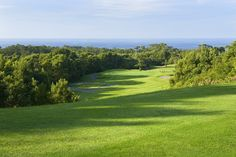 Batalha Golf Course #azores #Golf #travel